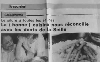 Les dents de la Seille (Silure)